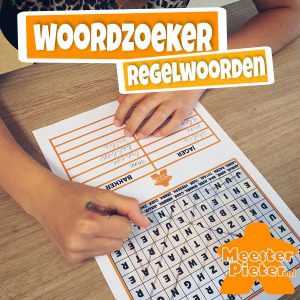 Woordzoeker regelwoorden spelling spellingsspelletje